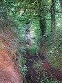 Camiño fondo - panoramio (1).jpg