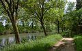 Canal du Midi, Vias, Hérault (03).jpg