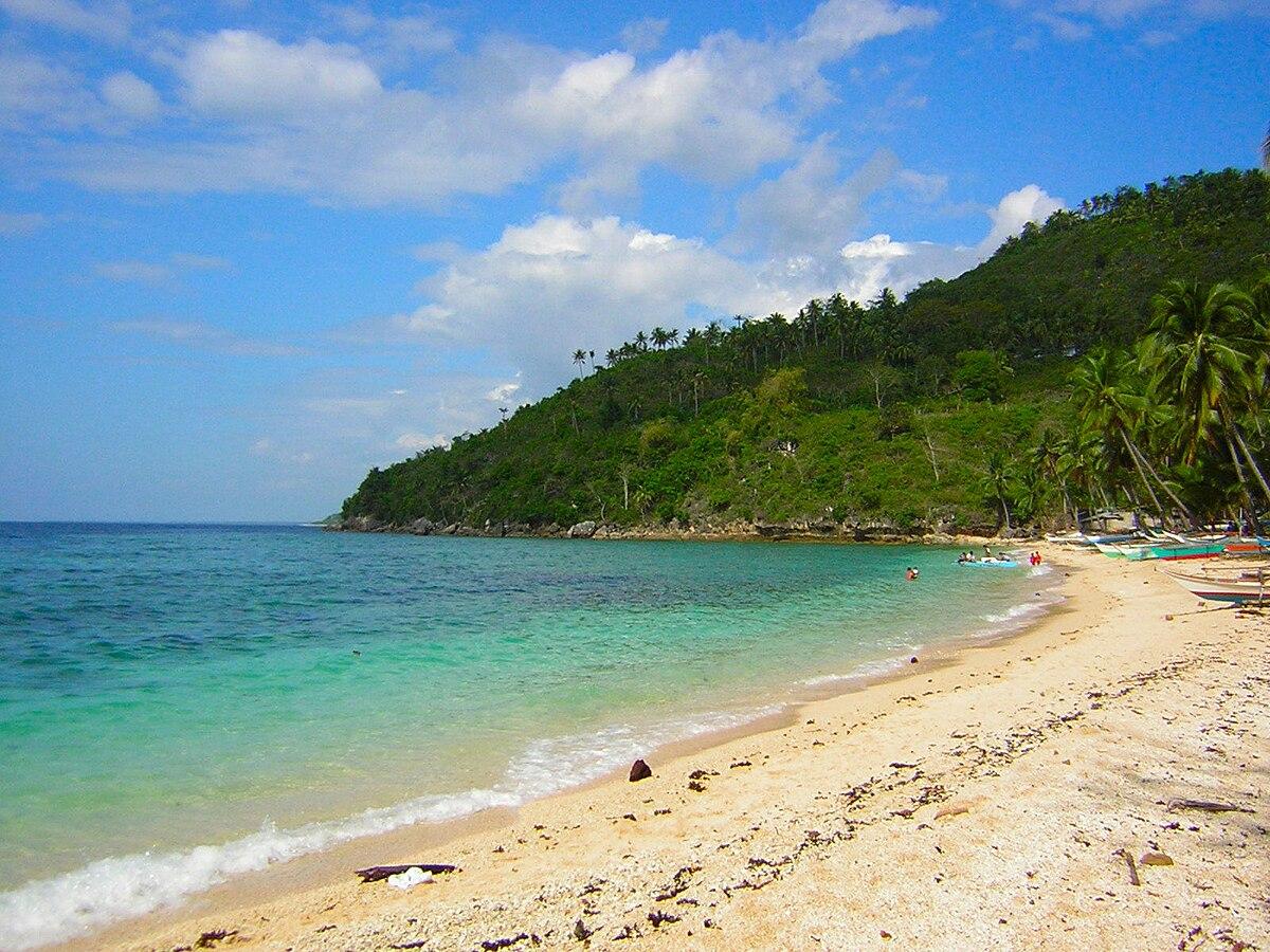 Aloguinsan Cebu Wikipedia