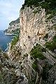 Capri, Italy - path - panoramio.jpg