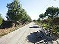 Carretera Requena desde la altura del Cementerio Municipal - panoramio.jpg