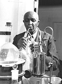 At work in his laboratory