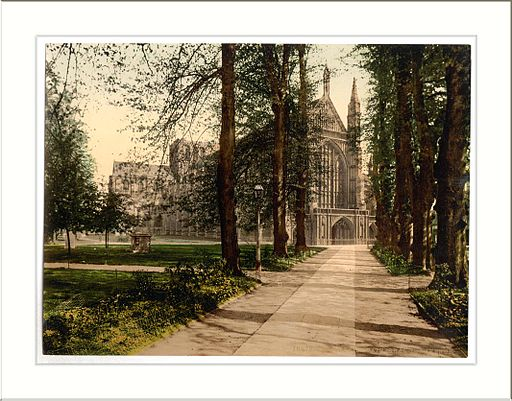 Cathedral and avenue Winchester England