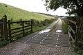 Cattle Grid - geograph.org.uk - 964453.jpg