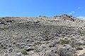 Centennial Park - panoramio (3).jpg