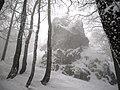 Cestou na Strážov - panoramio - Michal Jakubský.jpg
