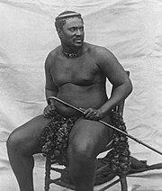 Cetshwayo-c1875