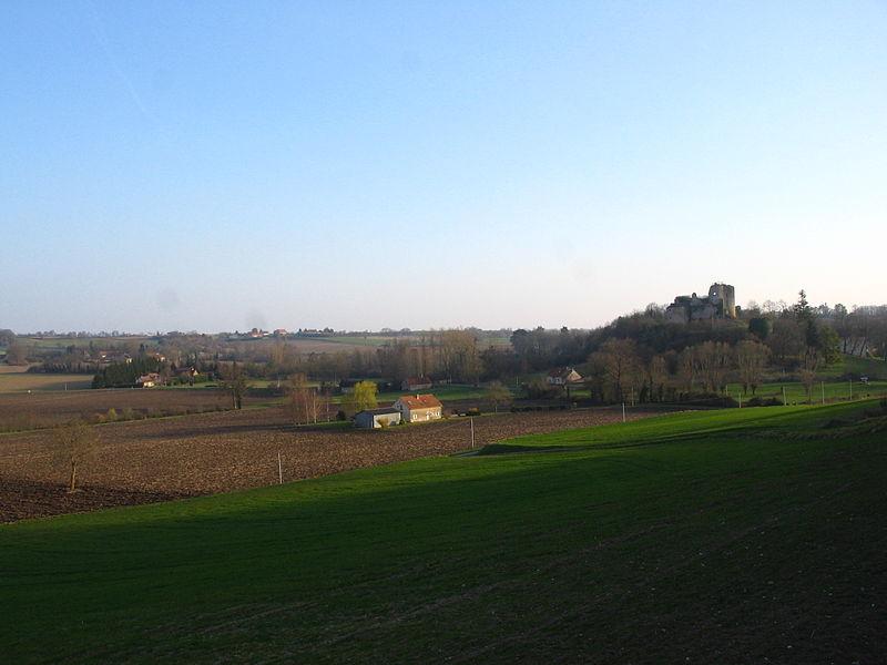 Vestiges du château de Montaigu le Blin (03), depuis sentier de la carrière.