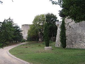 Château des Adhémar - Castle walls