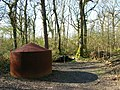 Charcoal Burner, Tottington Wood - geograph.org.uk - 757066.jpg
