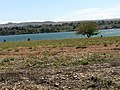 Chiawana Park - Pasco, Washington - Lake Wallula (0733).jpg
