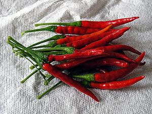 Chile de árbol - Fresh mature chile de árbol peppers