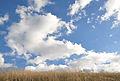 Chino hills state park sky.jpg