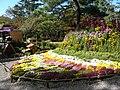 Chrysanthemum Doll and Flower Festival 09.JPG