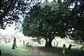 Churchyard, Parish church of St Peter and St Paul, Edenbridge - geograph.org.uk - 1713885.jpg