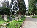 Churchyard, St Mary's Church - geograph.org.uk - 2576583.jpg