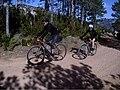 Ciclistes per pista a Els Ports 01.jpg