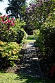 City of London Cemetery Memorial Gardens footpath 1.jpg