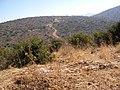 Climbing Har Shamai to Amirim - panoramio (4).jpg