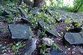 Cmentarz żydowski w Będzinie9.jpg