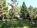Cmentarz wojskowy nr 60 na Przełęczy Małastowskiej (13080607843).jpg