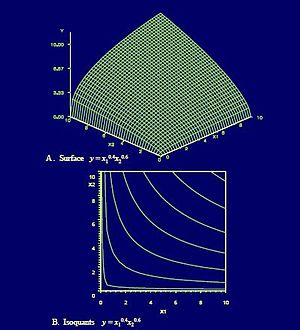 Cobb–Douglas production function - Wire-grid Cobb-Douglas production surface with isoquants