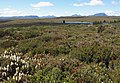 Colours of the Overland Track.jpg