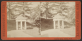 Columbian Spring, Saratoga, N.Y, from Robert N. Dennis collection of stereoscopic views.png
