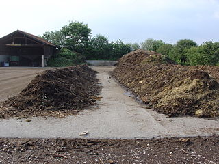 Compost Organic matter that has been decomposed