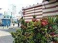 Conceicao, Campinas - State of São Paulo, Brazil - panoramio - Paulo Humberto (2).jpg