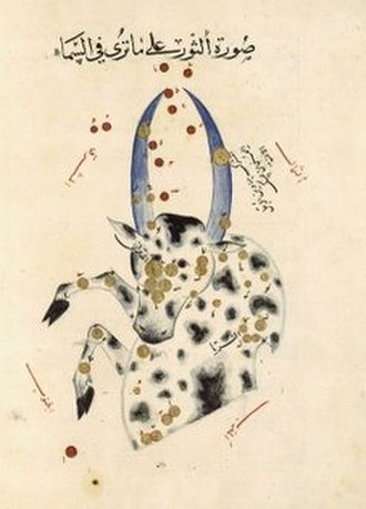 Taurus (constellation) - Taurus as depicted in the astronomical treatise Book of Fixed Stars by the Persian astronomer Abd al-Rahman al-Sufi, c. 964.