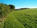 Countryside Path - geograph.org.uk - 267424.jpg