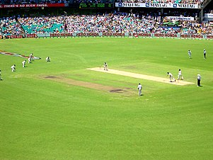 正在进行的国际锦标赛比赛。中央米色带是板球方球场。右侧远方身着黑裤的是板球裁判。