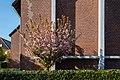 Dülmen, Hausdülmen, St.-Mauritius-Kirche -- 2020 -- 0270.jpg