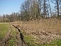 D-BW-Kressbronn aB - Feuchtgebietskomplex 'Ellenhalde' südwestlich Kümmertsweiler.JPG