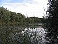 D-BW-Uhldingen-Mühlhofen - Egelsee.JPG