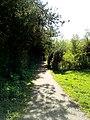 DE NRW Muenster Wolbecker-Tiergarten010.jpg