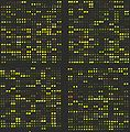 DNA microarray.jpg