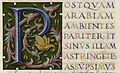 De situ orbis - Albi Ms77 - f363r - Lettrine P.jpg