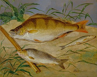 Coarse fishing - An angler's catch of coarse fish—painting by Dean Wolstenholme, circa 1850