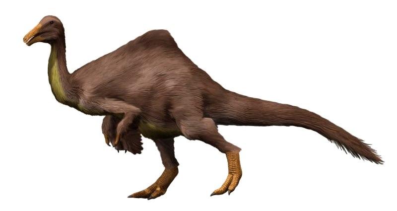 Deinocheirus NT