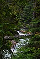 Denny Creek - panoramio.jpg