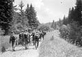 Die Mitrailleure auf dem Marsch durch den Hüttengraben - CH-BAR - 3238697.tif