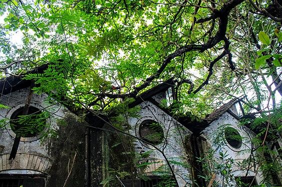 Dilapidated building Calicut.jpg