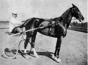 C.K.G. Billings - Legend - Lou Dillon 1.56. 1903