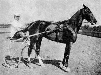 C. K. G. Billings - C.K.G. Billings with his horse Lou Dillon after winning the Webster Cup in 1903
