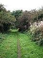 Dismantled railway trackbed - geograph.org.uk - 984043.jpg