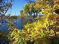 Display Pond (12819830895).jpg