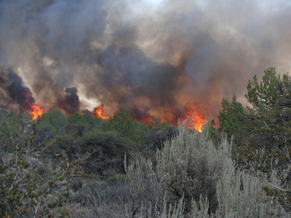 Dodge Fire - Wikipedia