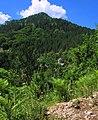 Domišljani - Pasak - Zaovine - panoramio.jpg